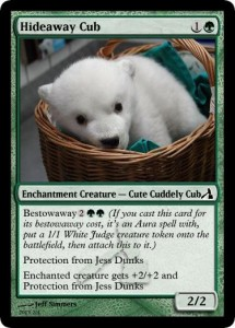 Hideaway Cub